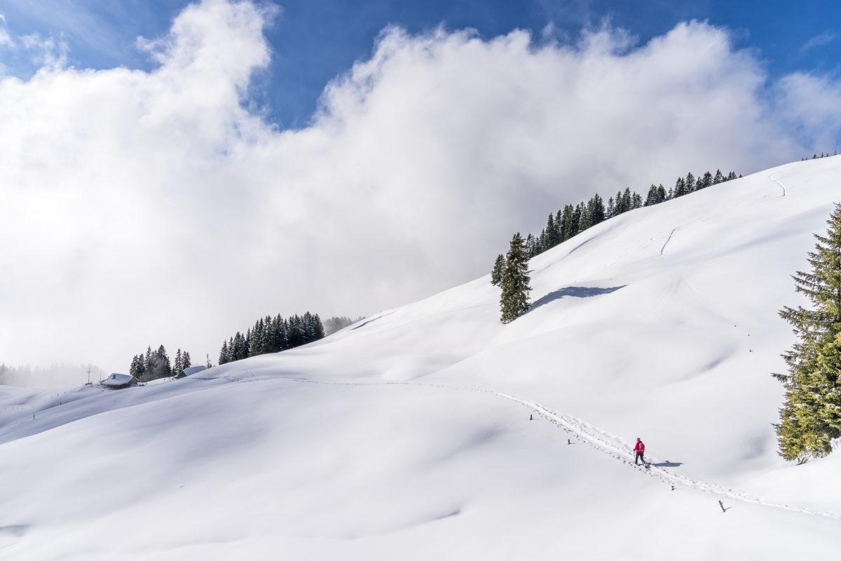 Jänzi Trail Richtung Langis