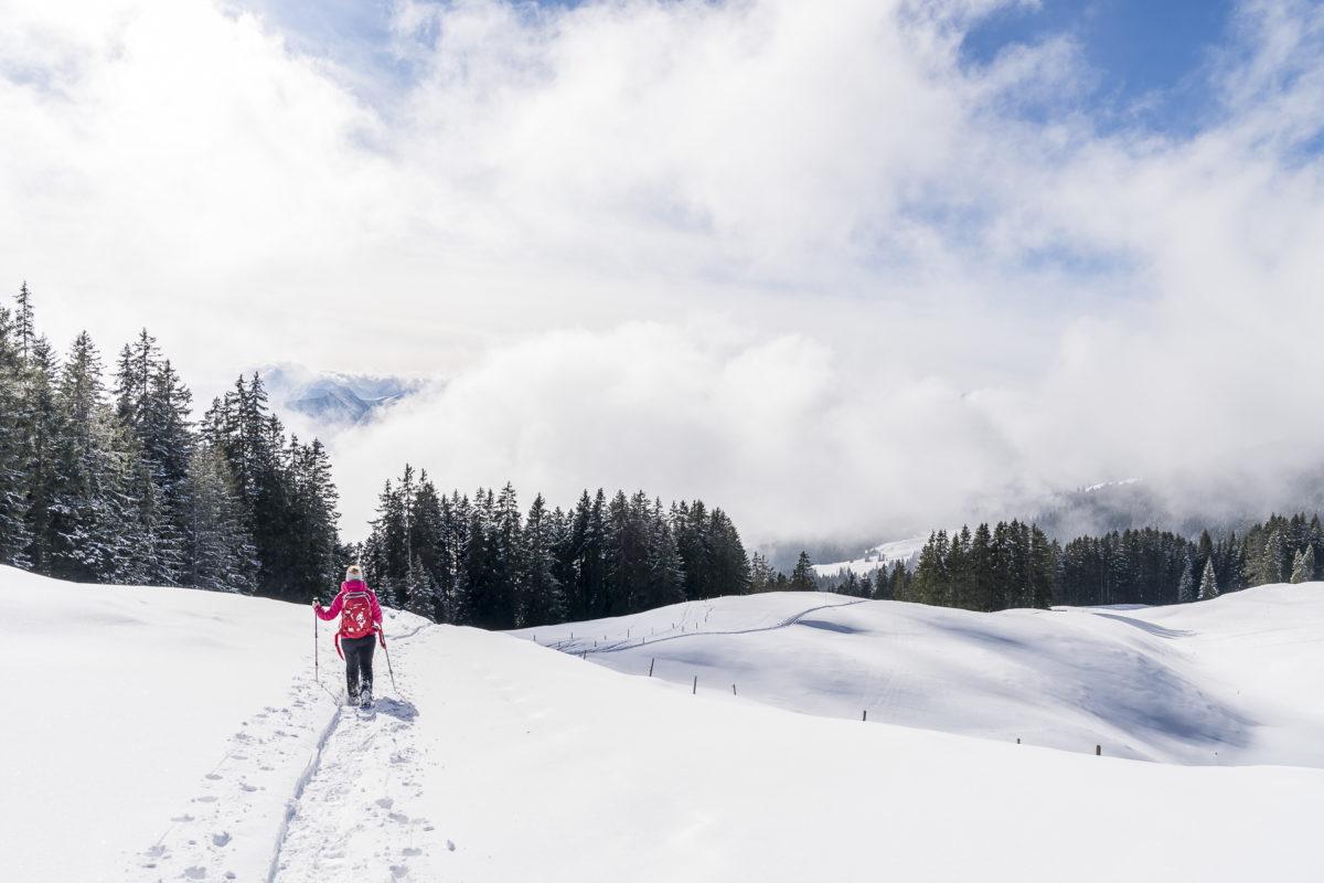 Jänzi Schneeschuhtrail Schneeschuhwandern