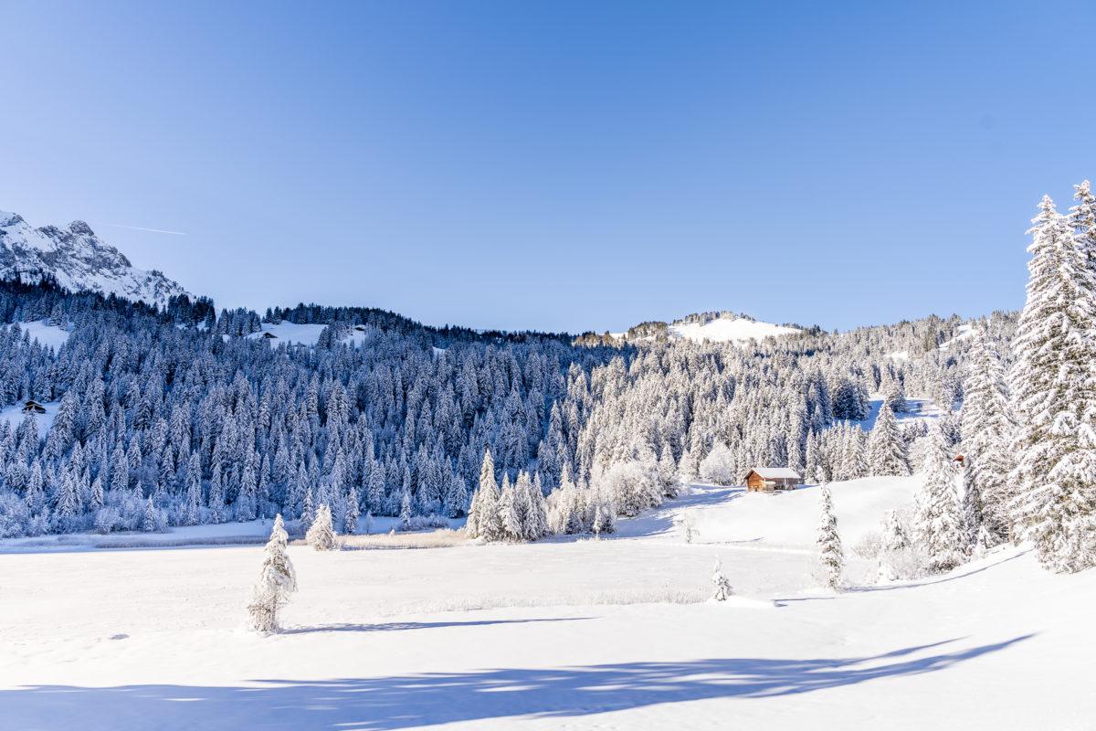 Lauenensee im Winter