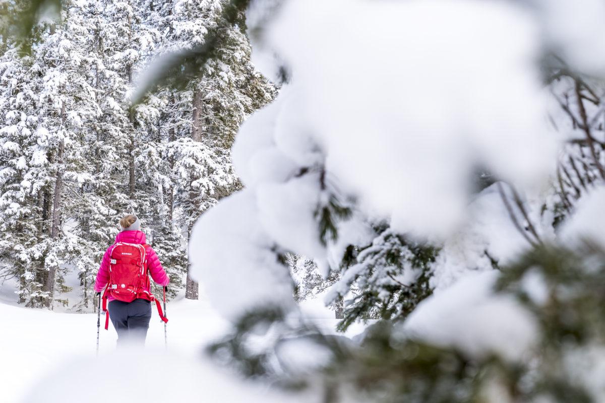 Schneeschuhlaufen Zentralschweiz