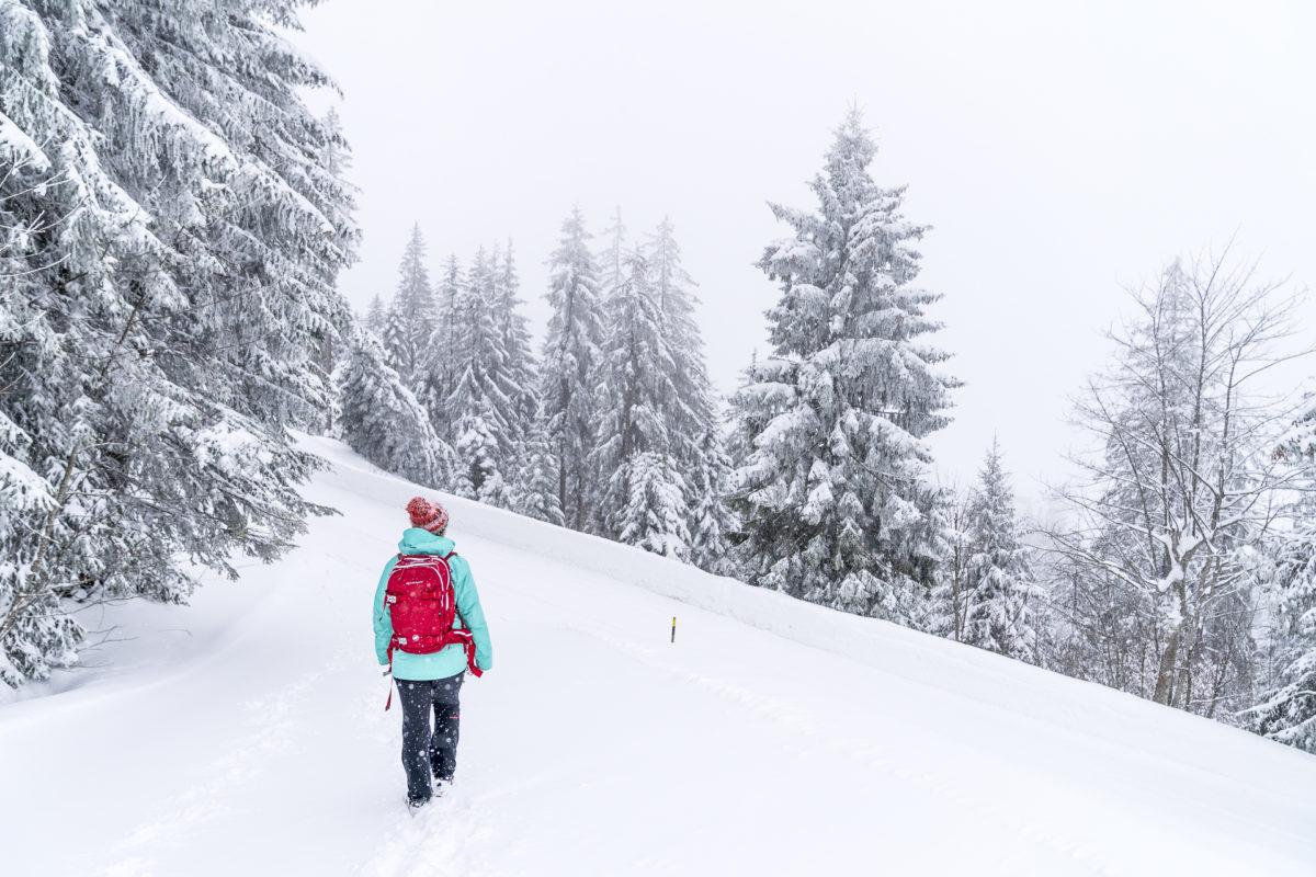 Sörenberg Winterwandern