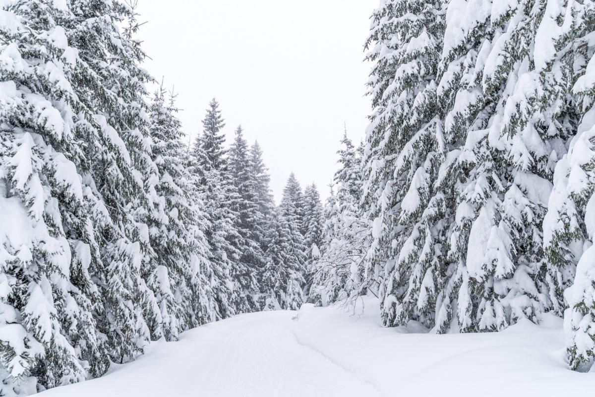 Unesco Biosphäre Entlebuch im Winter