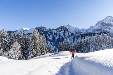 Winterwandern Gstaad Lauenensee