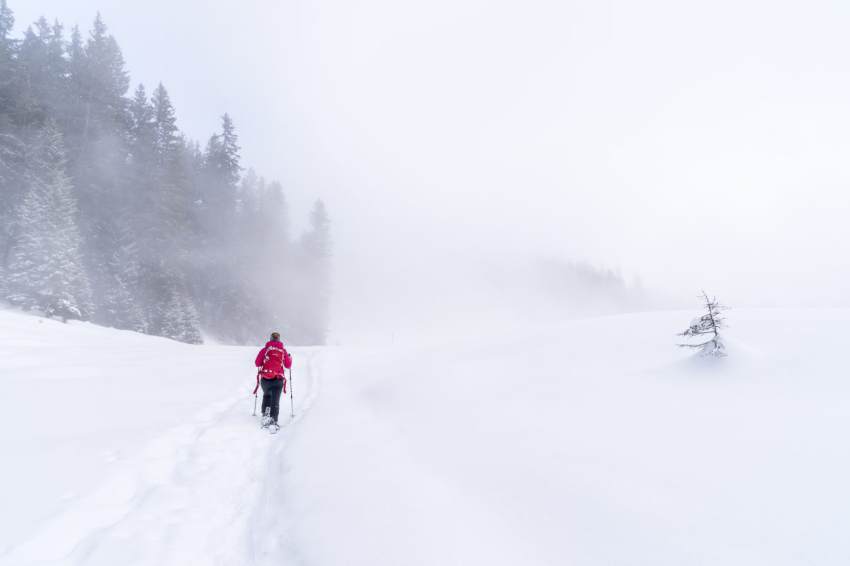 Winterwandern Nebel