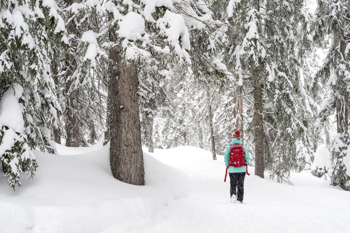 Winterwandern Sörenberg Rossweid