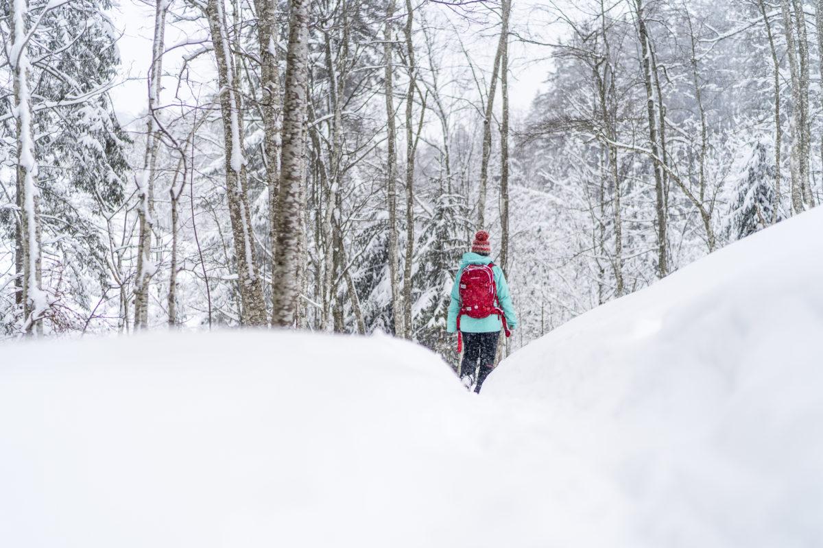 Winterwanderweg Rischli Sörenberg