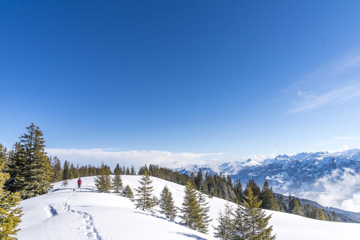 Jänzi Gipfelpfad