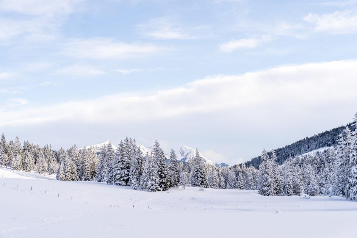 Winterlandschaft Langis-Glaubenberg