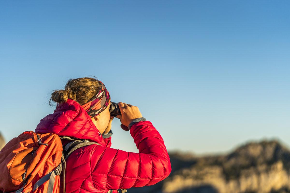 Feldstecher Wildbeobachtung