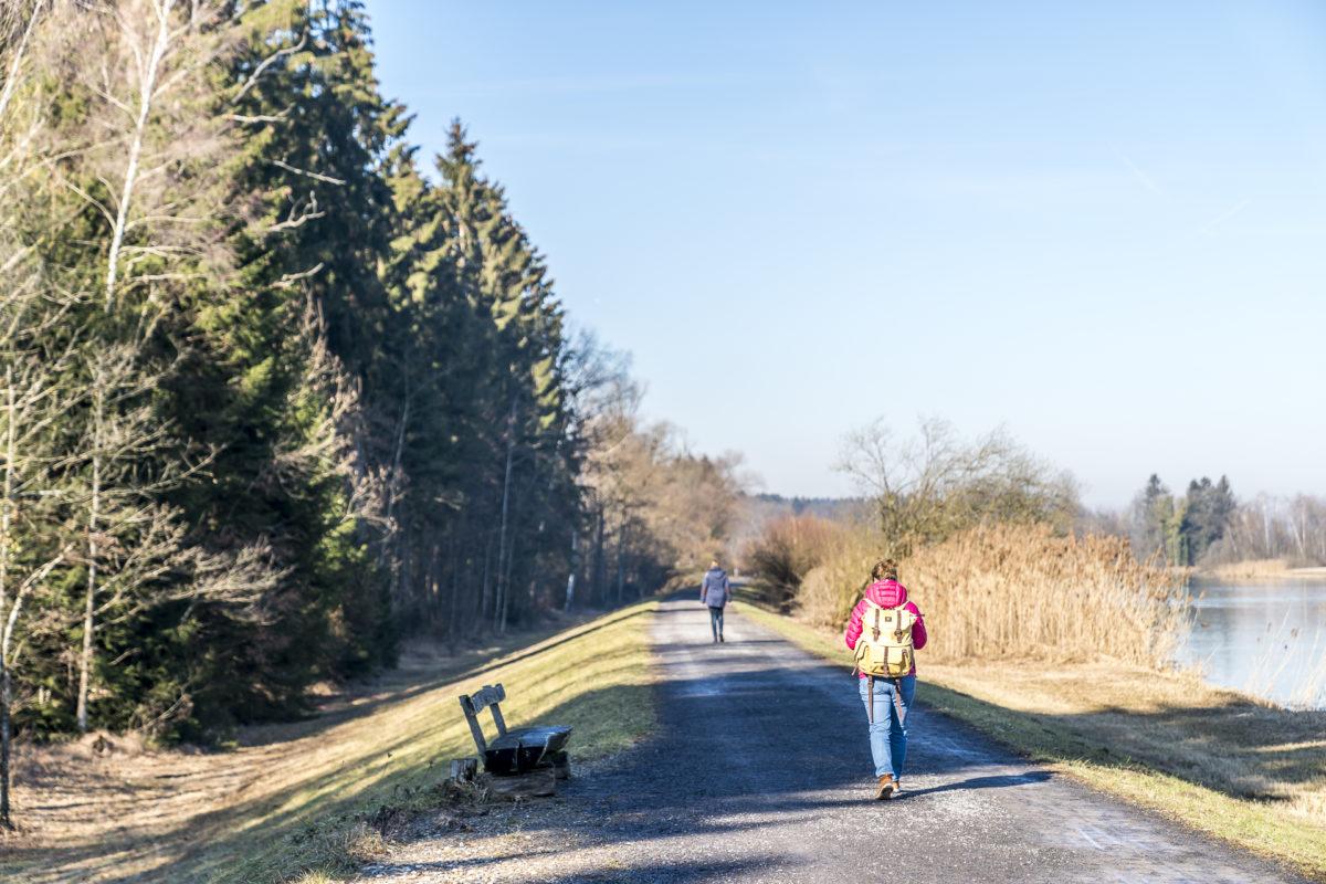 Flachsee Rundwanderung Aargau