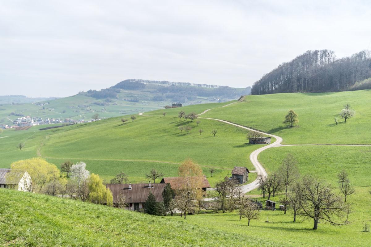 Gansingen Aargau