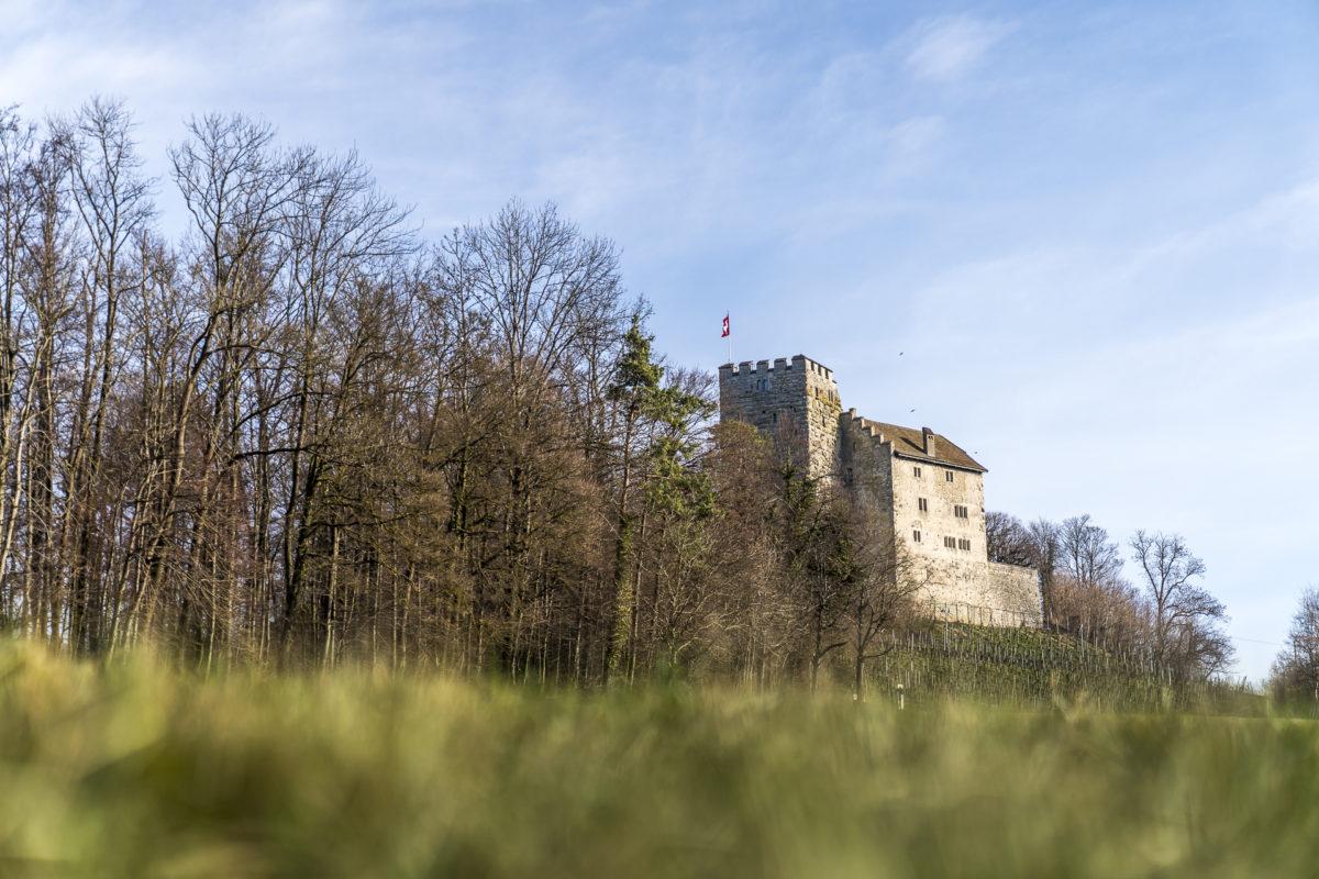 Habsburg Ausflugsziel im Aargau