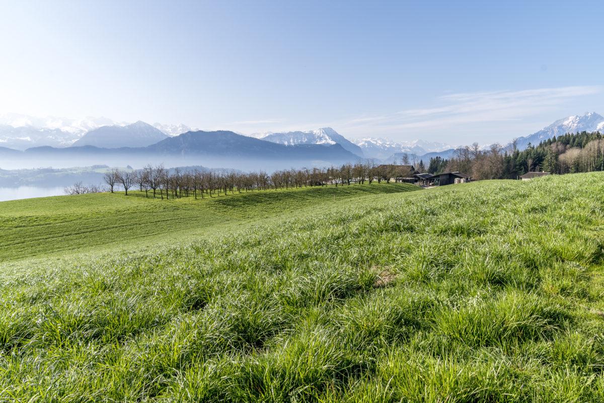 Meggen Luzerner Hinterland