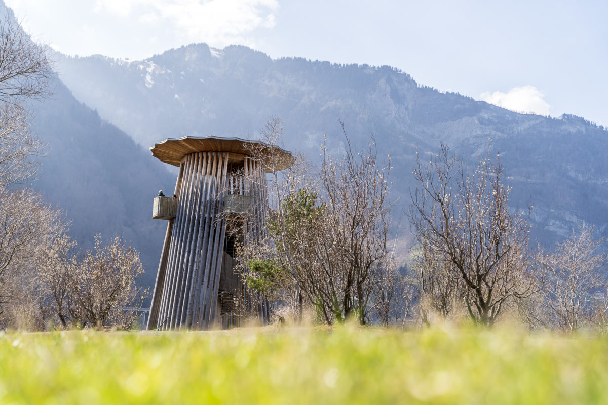 Turm Reussdelta