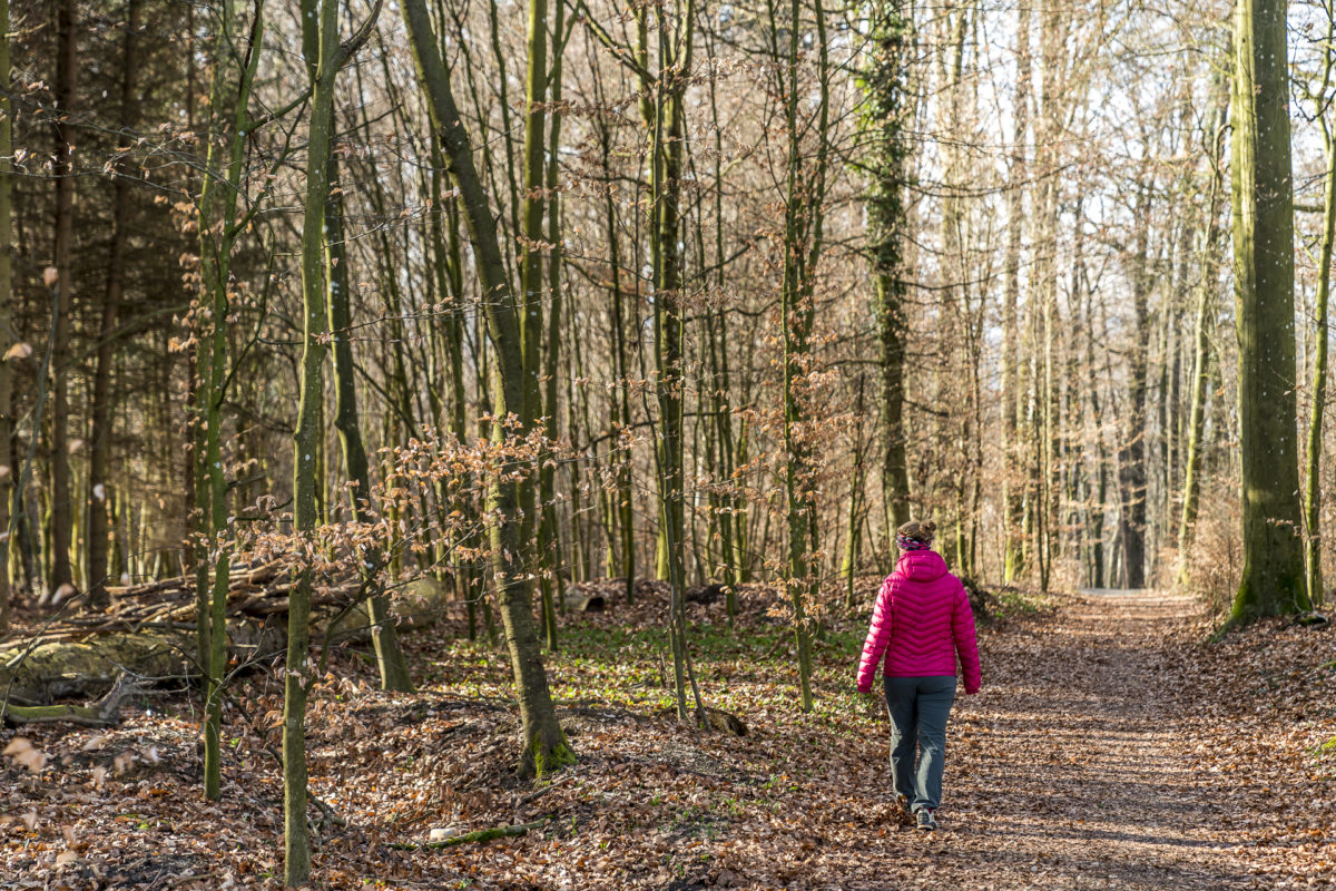 Wanderung Aargauer Weg