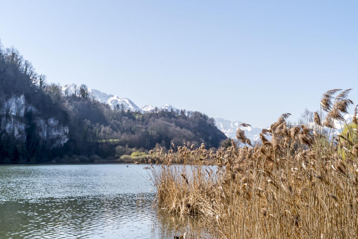 Wichelsee Zentralschweiz