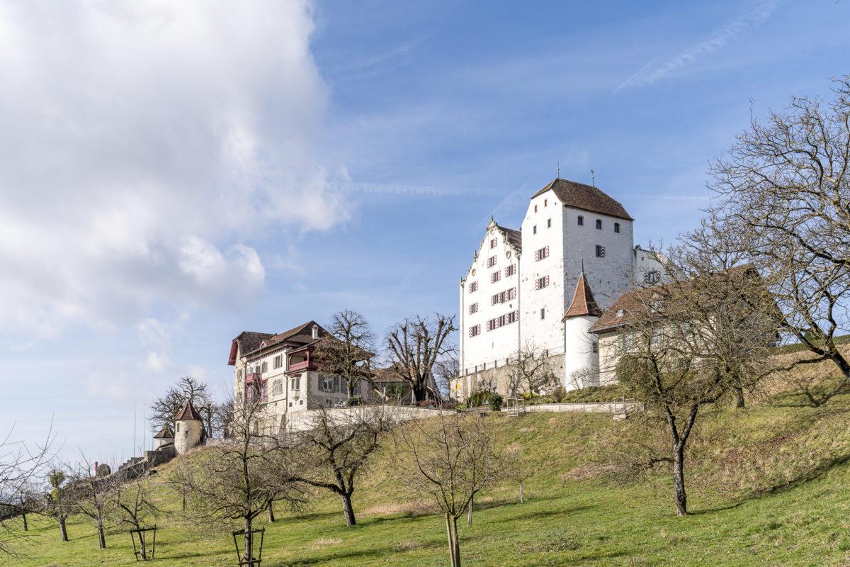 Wildegg Kanton Aargau