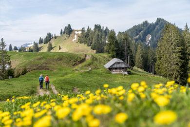 Moorlandschaftspfad Entlebuch: von Heiligkreuz zum Kneippweiher Schwandalp