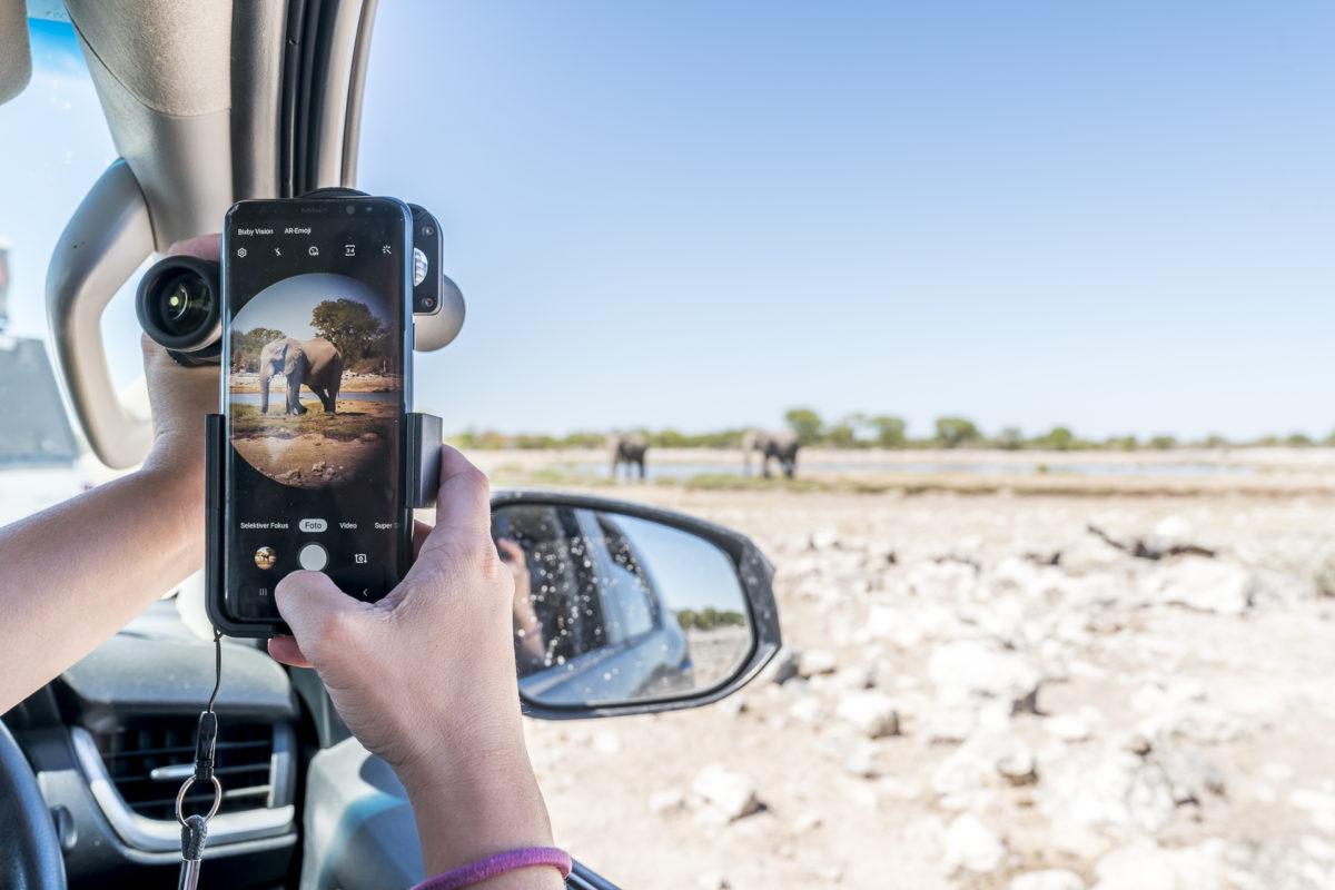 Tierfotografie mit Smartphone