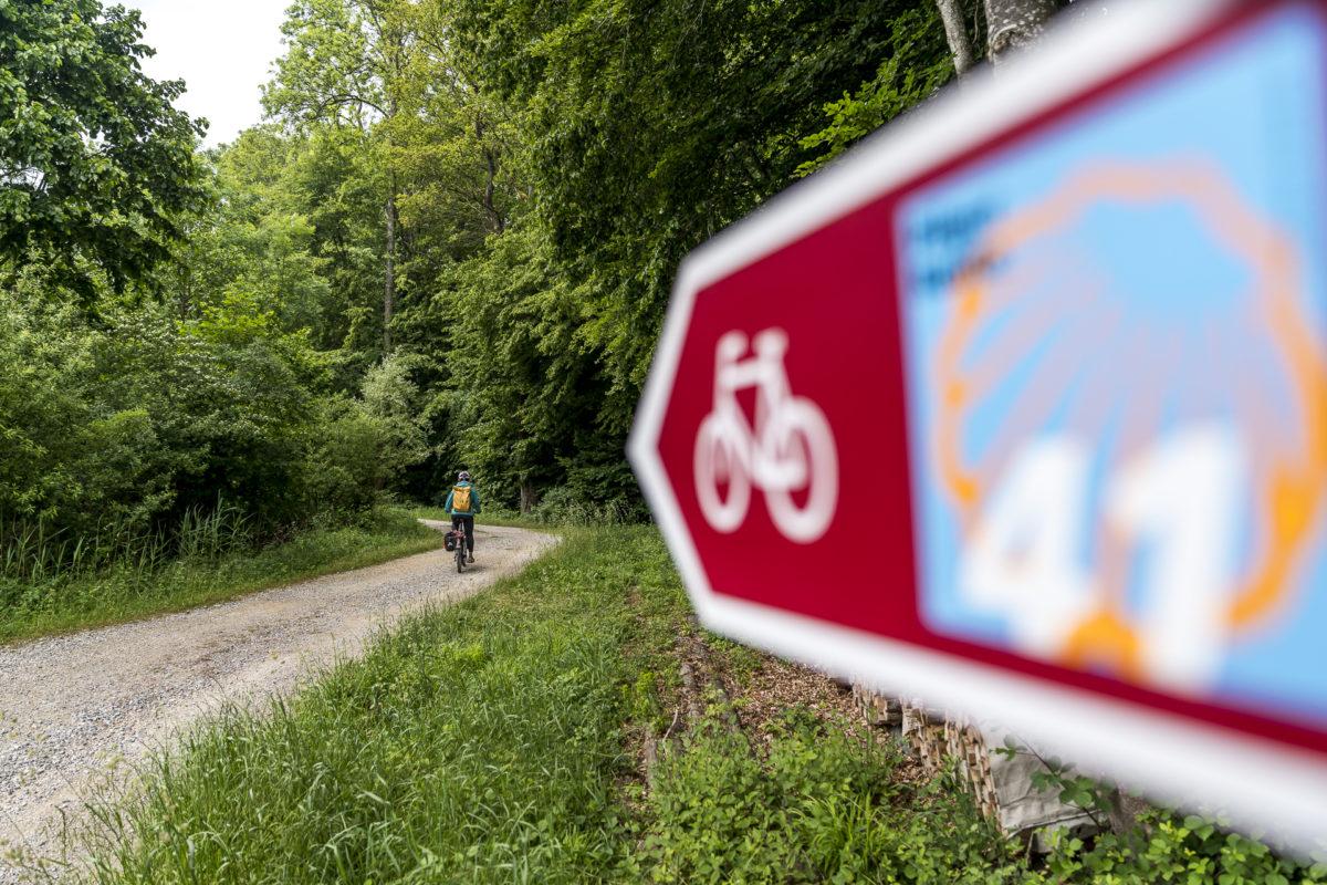 Bodensee-Radweg Velotour