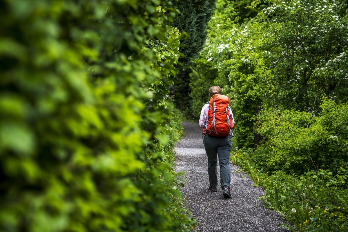 Cholerenschlucht Wanderung