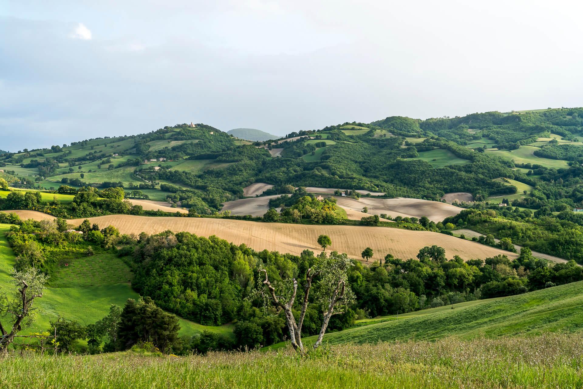 Italien Geheimtipp: Unser Roadtrip durch die Marken