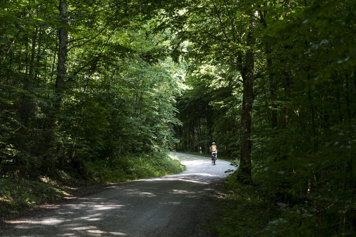 E-Biking von Wädli zum Bodensee