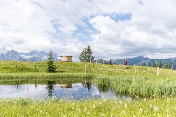 Wanderung Höhi Wispile - Lauenensee: mit dem Fonduerucksack über Stock & Stein