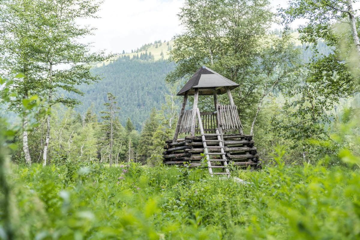 Moorrundweg Oberjoch Aussichtsturm