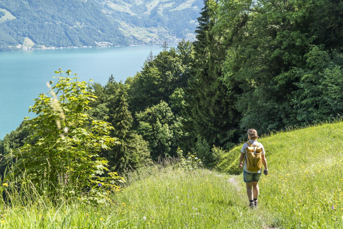 Wanderung nach Beckenried