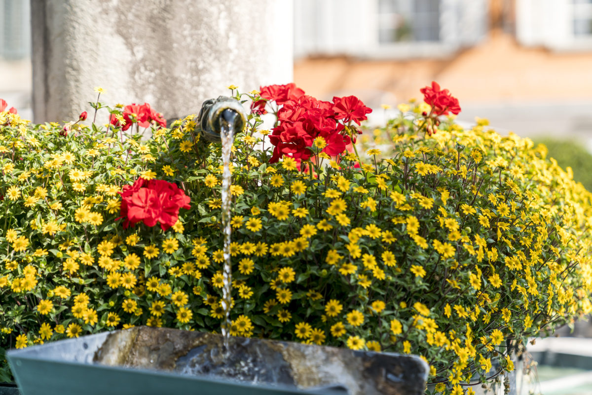 Willisau Brunnen
