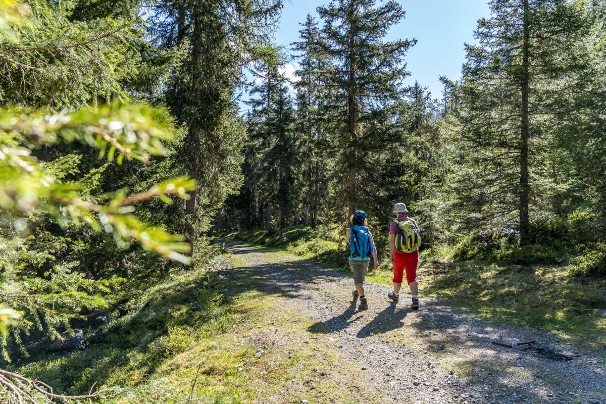 Waldweg Gries Kühtai