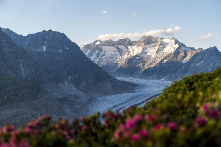 Aletsch Panoramaweg & Gletschertour: auf Tuchfühlung mit dem Aletschgletscher