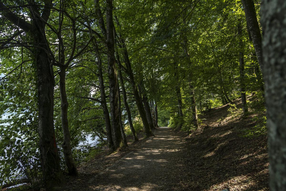 Uferweg Spiez