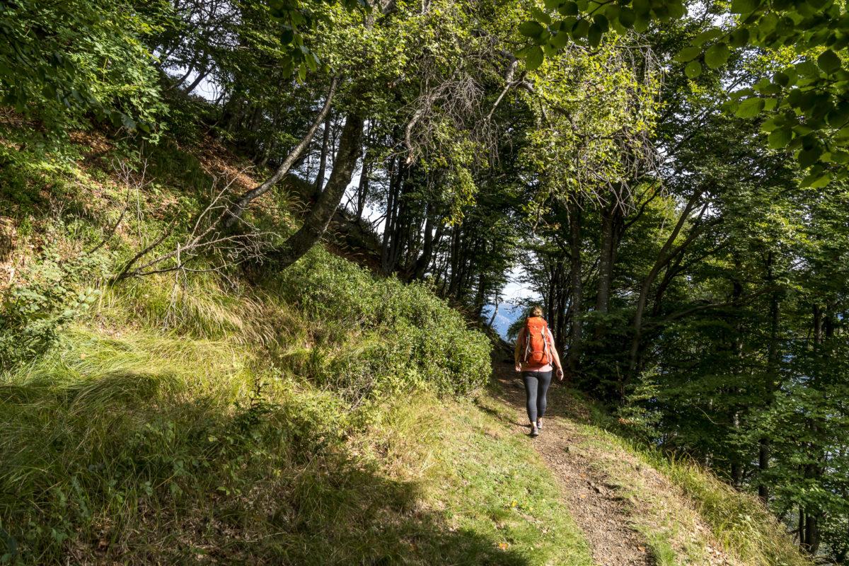 Aufstieg Monte Gambarogno
