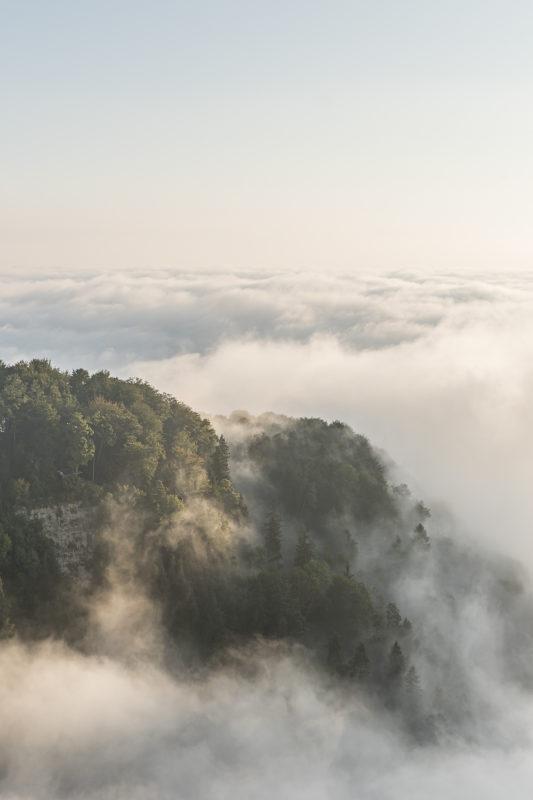 Fallätschen Leimbach Nebel