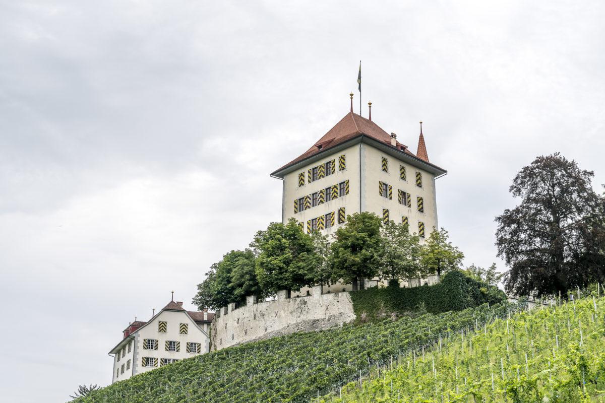 Gelfingen Schloss Heidegg