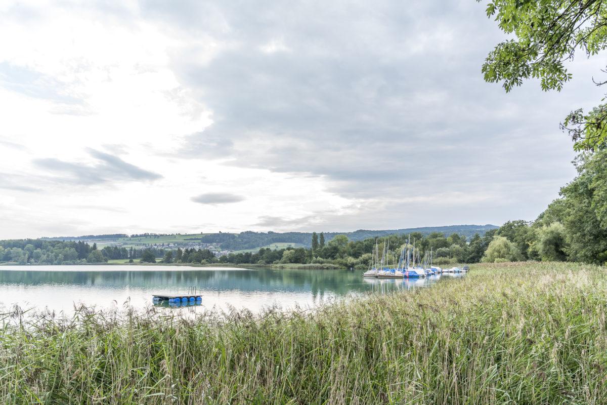 Hallwilersee Seetal