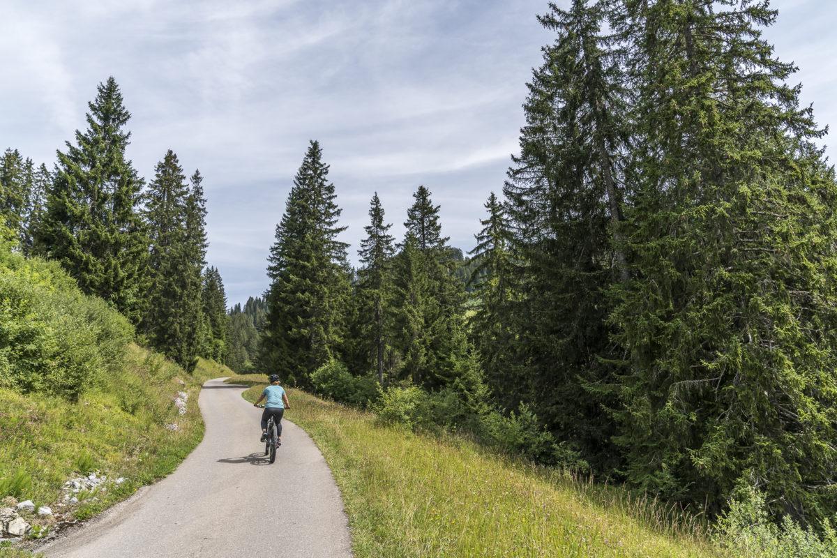 Rellerli Bike e-Biking
