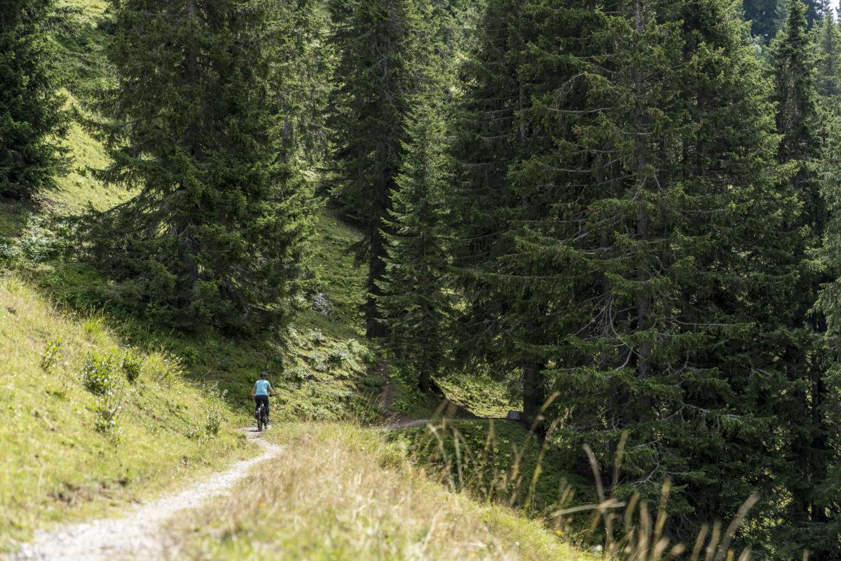 Rellerli-Bike Gstaad Saanenland