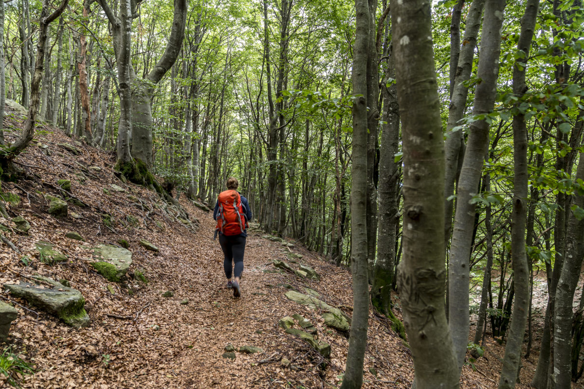 Wandern in der Region Locarnese