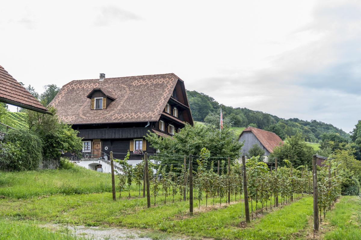 Weingut im Seetal