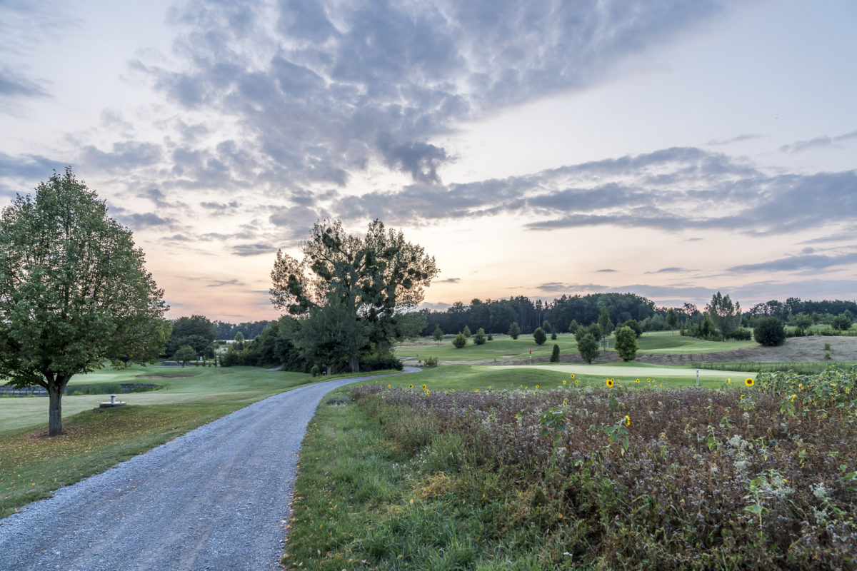 Golfplatz Friedrichsruhe