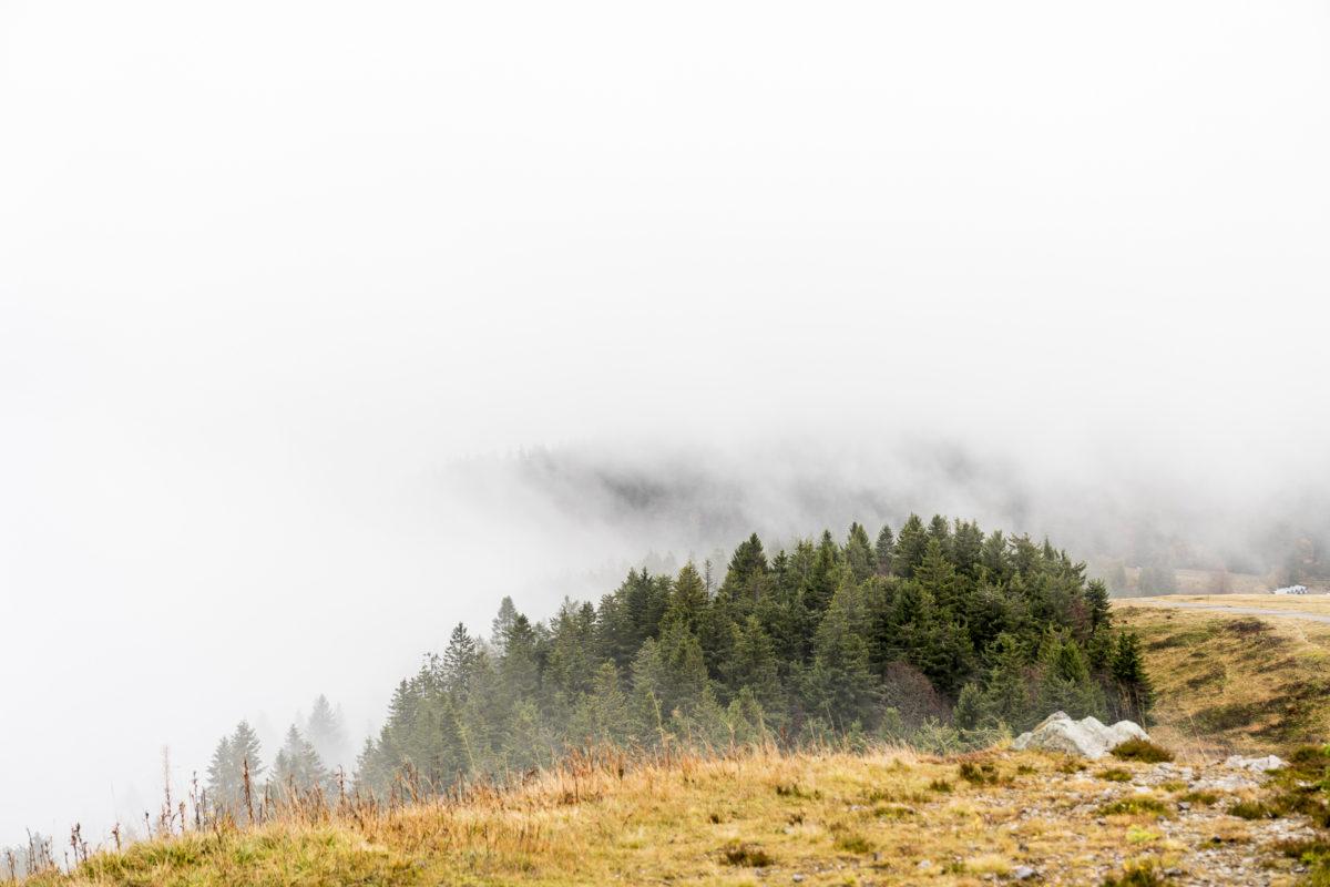 Feldberg Nebel