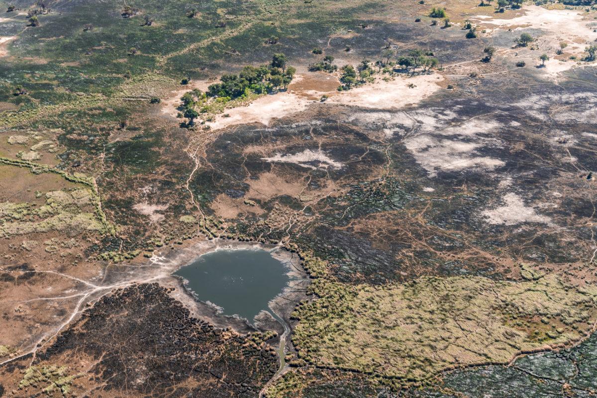 Okavango Delta Buschbrände