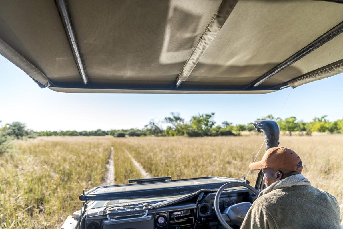 Botswana Safari: Pirschfahrt Okavango Delta