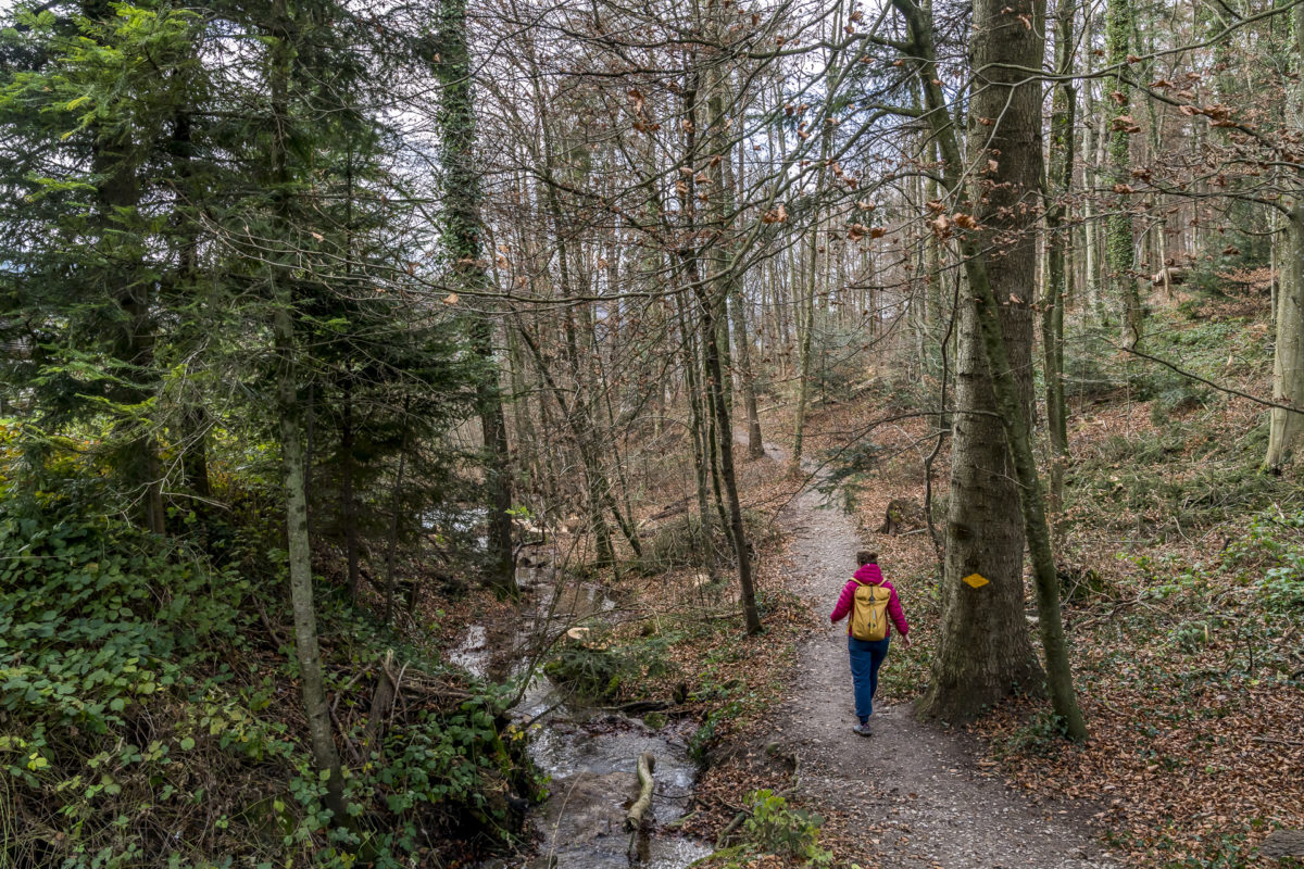 Altberg Wanderung