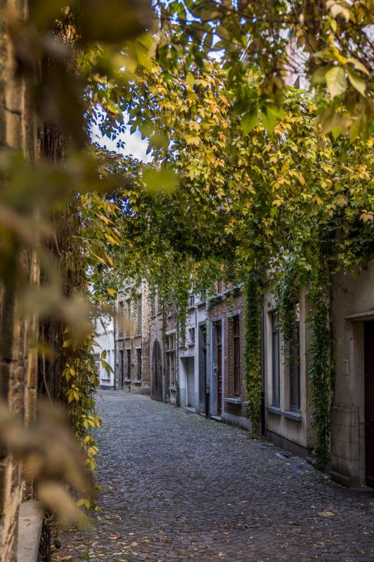 Altstadt Antwerp