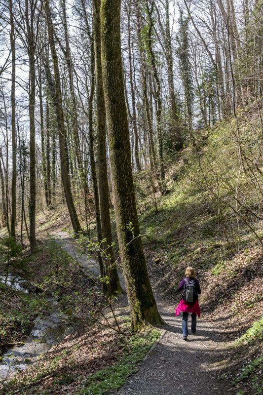 Erlenbacher Tobel Weg