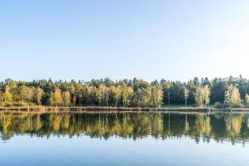 9 Ausflugsziele rund um Zürich -  Grüne Oasen für Naturfreunde